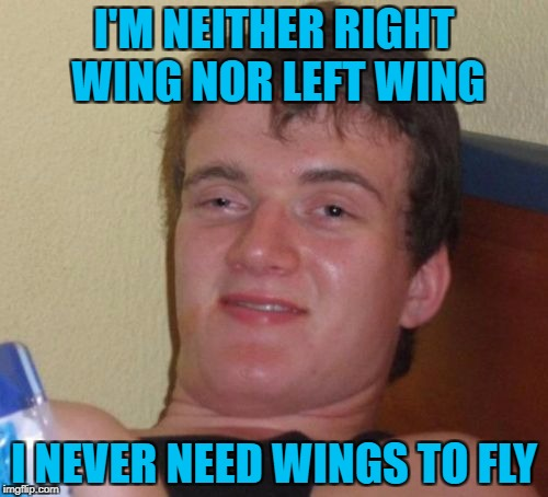 Repost week Oct 15 - 21 ( A GotHighMadeAMeme and Pipe_Picasso event) | I'M NEITHER RIGHT WING NOR LEFT WING I NEVER NEED WINGS TO FLY | image tagged in memes,10 guy,repost week,no wings needed,funny signs,mostlikelyarepost | made w/ Imgflip meme maker