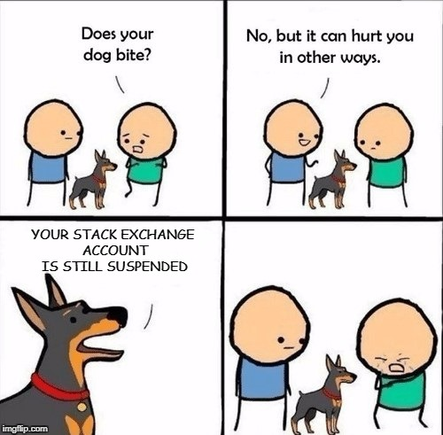 does your dog bite | YOUR STACK EXCHANGE ACCOUNT IS STILL SUSPENDED | image tagged in does your dog bite | made w/ Imgflip meme maker