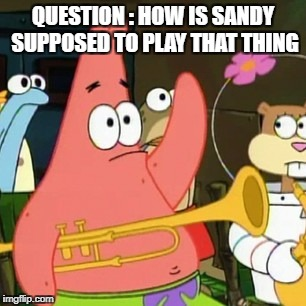 No Patrick Meme | QUESTION : HOW IS SANDY SUPPOSED TO PLAY THAT THING | image tagged in memes,no patrick | made w/ Imgflip meme maker