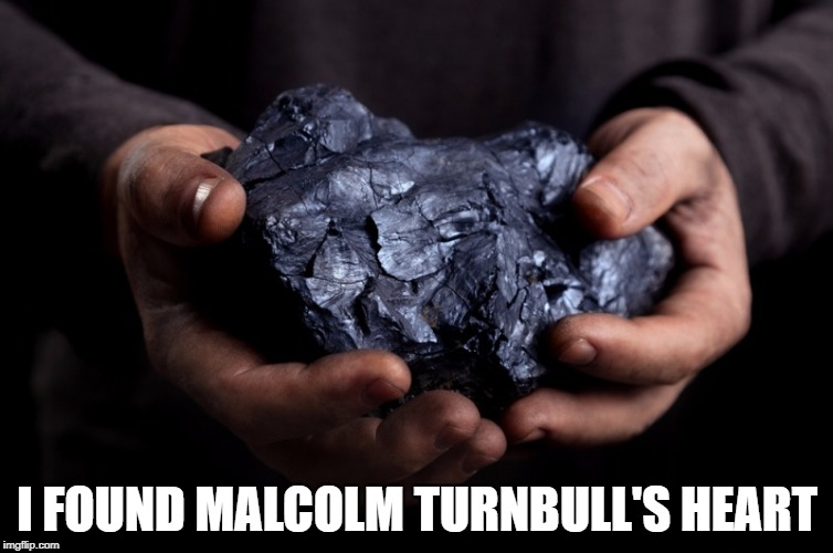 I FOUND MALCOLM TURNBULL'S HEART | image tagged in coal rock | made w/ Imgflip meme maker