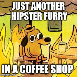 Hipster Doggo | JUST ANOTHER HIPSTER FURRY IN A COFFEE SHOP | image tagged in breathe,fedora,stop drop and roll | made w/ Imgflip meme maker