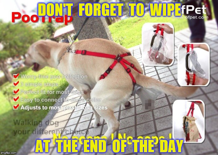 DON'T  FORGET  TO  WIPE AT  THE  END  OF  THE  DAY | made w/ Imgflip meme maker