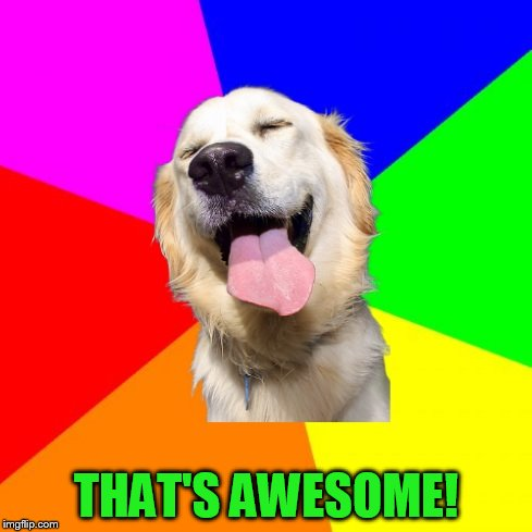 Anti Pun Dog | THAT'S AWESOME! | image tagged in anti pun dog | made w/ Imgflip meme maker