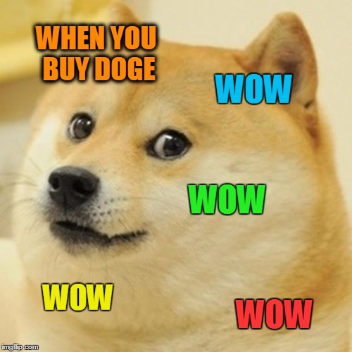 Doge Meme | WHEN YOU BUY DOGE WOW WOW WOW WOW | image tagged in memes,doge | made w/ Imgflip meme maker