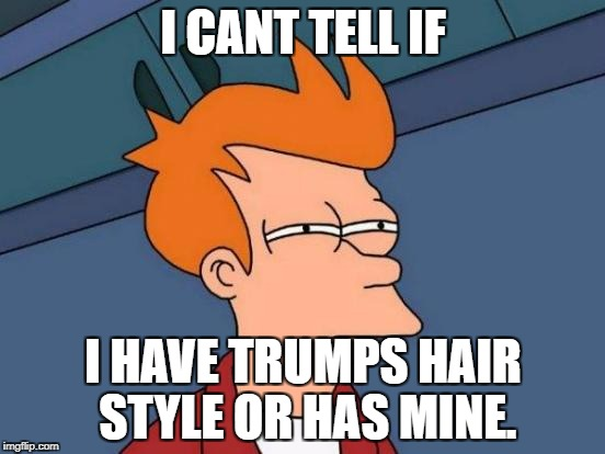 Futurama Fry Meme | I CANT TELL IF I HAVE TRUMPS HAIR STYLE OR HAS MINE. | image tagged in memes,futurama fry | made w/ Imgflip meme maker