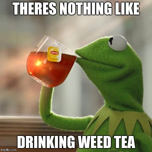 But Thats None Of My Business Meme | THERES NOTHING LIKE DRINKING WEED TEA | image tagged in memes,but thats none of my business,kermit the frog | made w/ Imgflip meme maker