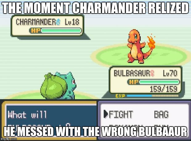 pokemon | THE MOMENT CHARMANDER RELIZED HE MESSED WITH THE WRONG BULBAAUR | image tagged in pokemon | made w/ Imgflip meme maker