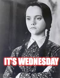 Wednesday Addams | IT'S WEDNESDAY | image tagged in wednesday addams | made w/ Imgflip meme maker