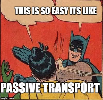 Batman Slapping Robin Meme | THIS IS SO EASY ITS LIKE PASSIVE TRANSPORT | image tagged in memes,batman slapping robin | made w/ Imgflip meme maker