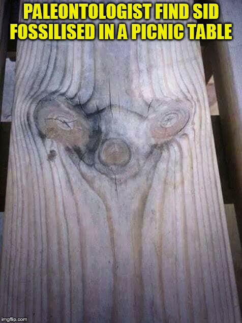 Ice Age Week - A Jesus_Milk event October 24-30 (And a repost of my old meme lol) | PALEONTOLOGIST FIND SID FOSSILISED IN A PICNIC TABLE | image tagged in memes,ice age week,ice age,repost week,sid,fossilised | made w/ Imgflip meme maker