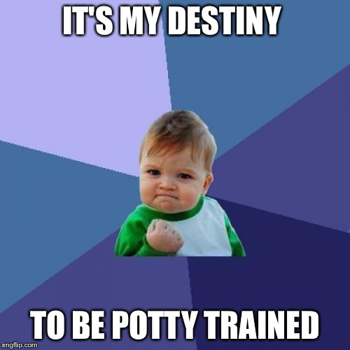 Success Kid Meme | IT'S MY DESTINY TO BE POTTY TRAINED | image tagged in memes,success kid | made w/ Imgflip meme maker