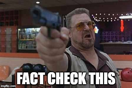 FACT CHECK THIS | image tagged in walter from the big lebowski with gun in hand | made w/ Imgflip meme maker