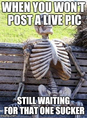 Waiting Skeleton Meme | WHEN YOU WON'T POST A LIVE PIC STILL WAITING FOR THAT ONE SUCKER | image tagged in memes,waiting skeleton | made w/ Imgflip meme maker