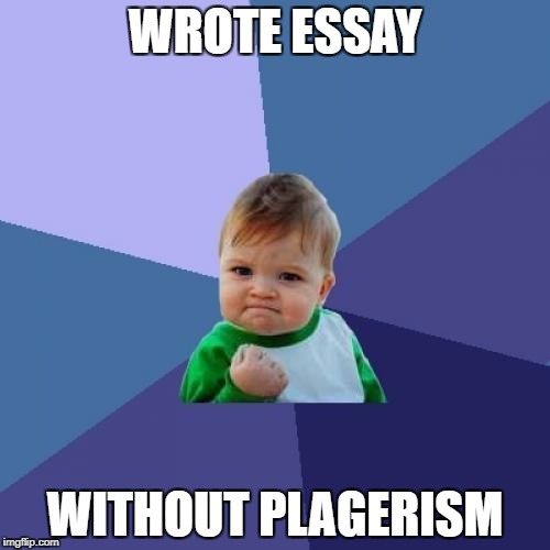 Success Kid Meme | WROTE ESSAY WITHOUT PLAGERISM | image tagged in memes,success kid | made w/ Imgflip meme maker