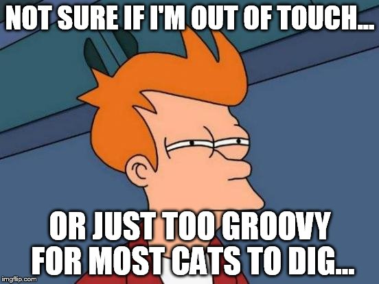 Futurama Fry Meme | NOT SURE IF I'M OUT OF TOUCH... OR JUST TOO GROOVY FOR MOST CATS TO DIG... | image tagged in memes,futurama fry | made w/ Imgflip meme maker
