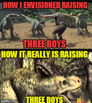 Raising three children of the same sex | HOW I ENVISIONED RAISING THREE BOYS HOW IT REALLY IS RAISING THREE BOYS | image tagged in children,dinosaur,boys,raising,parents | made w/ Imgflip meme maker