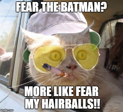 Fear And Loathing Cat | FEAR THE BATMAN? MORE LIKE FEAR MY HAIRBALLS!! | image tagged in memes,fear and loathing cat | made w/ Imgflip meme maker