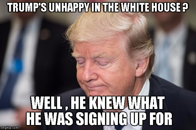 TRUMP'S UNHAPPY IN THE WHITE HOUSE ? WELL , HE KNEW WHAT HE WAS SIGNING UP FOR | image tagged in trump | made w/ Imgflip meme maker
