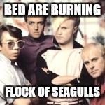 BED ARE BURNING FLOCK OF SEAGULLS | made w/ Imgflip meme maker