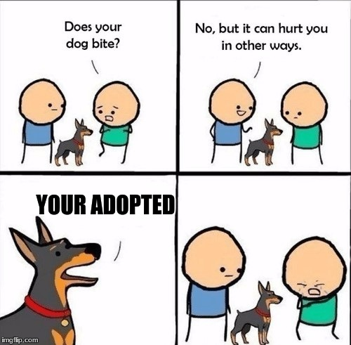 R.I.P. His Feelings |  YOUR ADOPTED | image tagged in does your dog bite,cyanide and happiness,doggo,memes,dank memes,funny | made w/ Imgflip meme maker
