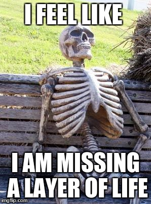 Waiting Skeleton Meme | I FEEL LIKE I AM MISSING A LAYER OF LIFE | image tagged in memes,waiting skeleton | made w/ Imgflip meme maker