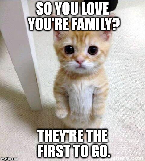 Diablo Gatto | SO YOU LOVE YOU'RE FAMILY? THEY'RE THE FIRST TO GO. | image tagged in memes,cute cat,murder,death,kill,killer | made w/ Imgflip meme maker