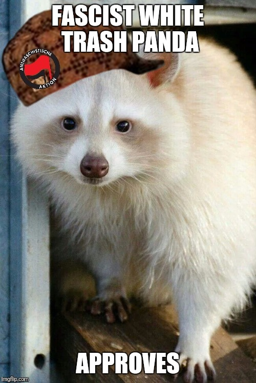 FASCIST WHITE TRASH PANDA APPROVES | image tagged in fascist white trash panda 2 | made w/ Imgflip meme maker