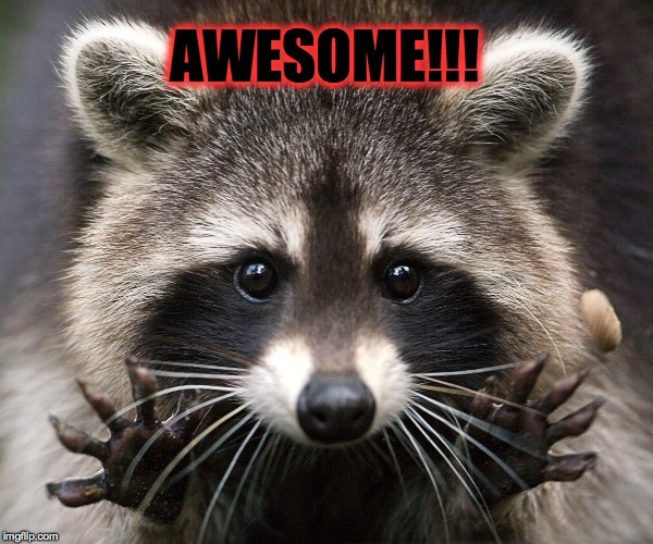 AWESOME!!! | made w/ Imgflip meme maker