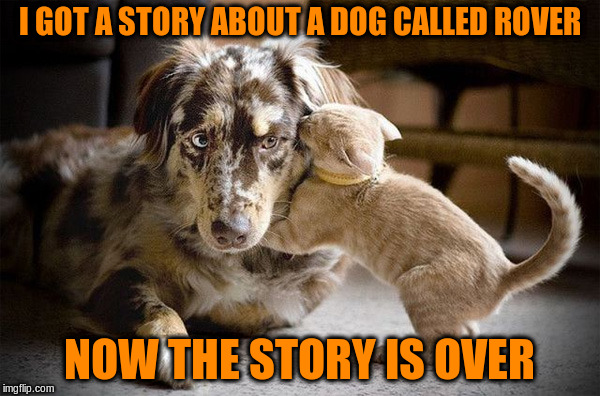 I GOT A STORY ABOUT A DOG CALLED ROVER NOW THE STORY IS OVER | made w/ Imgflip meme maker