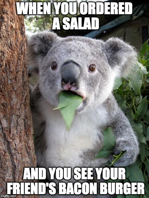 Surprised Koala Meme | WHEN YOU ORDERED A SALAD AND YOU SEE YOUR FRIEND'S BACON BURGER | image tagged in memes,surprised koala | made w/ Imgflip meme maker