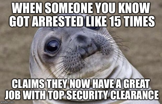 Awkward Moment Sealion Meme | WHEN SOMEONE YOU KNOW GOT ARRESTED LIKE 15 TIMES CLAIMS THEY NOW HAVE A GREAT JOB WITH TOP SECURITY CLEARANCE | image tagged in memes,awkward moment sealion | made w/ Imgflip meme maker