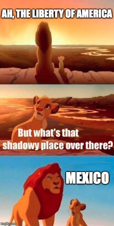 Simba Shadowy Place Meme | AH, THE LIBERTY OF AMERICA MEXICO | image tagged in memes,simba shadowy place | made w/ Imgflip meme maker