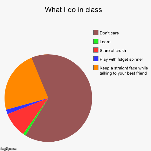 What I do in class  | Keep a straight face while talking to your best friend , Play with fidget spinner , Stare at crush , Learn, Don't care | image tagged in funny,pie charts | made w/ Imgflip chart maker