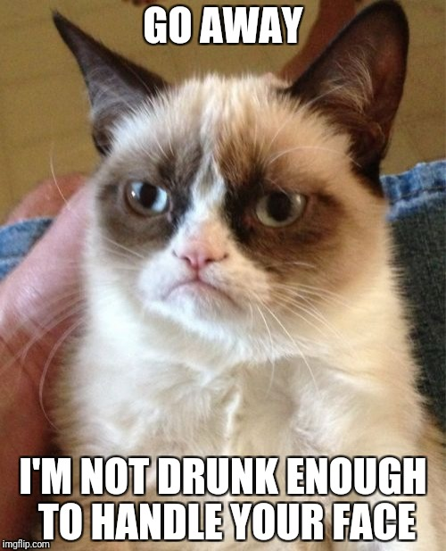 Grumpy Cat Meme | GO AWAY I'M NOT DRUNK ENOUGH TO HANDLE YOUR FACE | image tagged in memes,grumpy cat | made w/ Imgflip meme maker