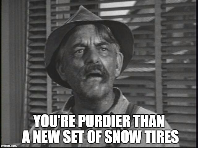 YOU'RE PURDIER THAN A NEW SET OF SNOW TIRES | image tagged in mrdarling | made w/ Imgflip meme maker