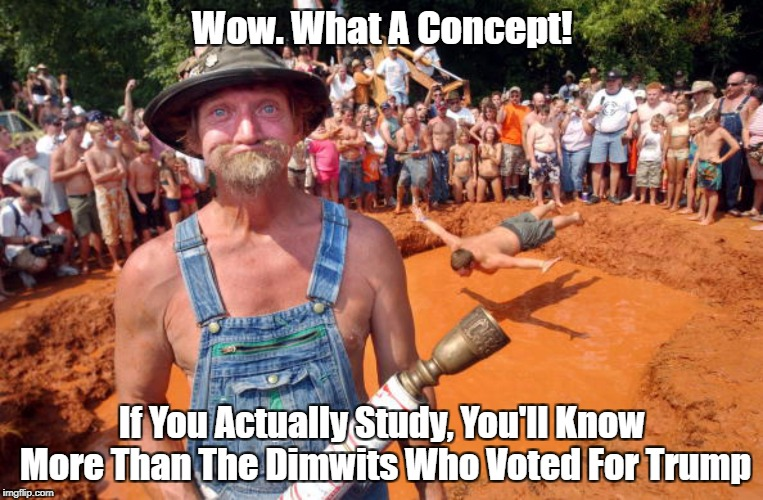 Wow. What A Concept! If You Actually Study, You'll Know More Than The Dimwits Who Voted For Trump | made w/ Imgflip meme maker