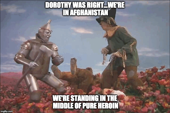 Wizard of Afghanistan | DOROTHY WAS RIGHT...WE'RE IN AFGHANISTAN WE'RE STANDING IN THE MIDDLE OF PURE HEROIN | image tagged in the wizard of oz,heroin | made w/ Imgflip meme maker