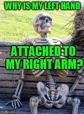 Waiting Skeleton Meme | WHY IS MY LEFT HAND ATTACHED TO MY RIGHT ARM? | image tagged in memes,waiting skeleton | made w/ Imgflip meme maker