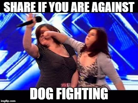 SHARE IF YOU ARE AGAINST DOG FIGHTING | image tagged in against dog fighting | made w/ Imgflip meme maker