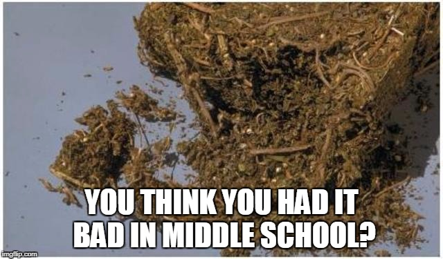 YOU THINK YOU HAD IT BAD IN MIDDLE SCHOOL? | made w/ Imgflip meme maker