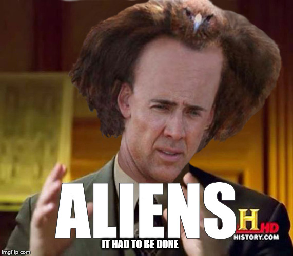 """Nicholas Cage Bird hair Aliens guy"" 