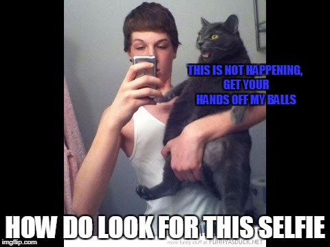 playing grab ass with cat | THIS IS NOT HAPPENING, GET YOUR HANDS OFF MY BALLS HOW DO LOOK FOR THIS SELFIE | image tagged in balls,selfie,cat,grabbing balls | made w/ Imgflip meme maker