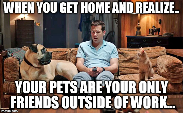 hearing voices after work like | WHEN YOU GET HOME AND REALIZE.. YOUR PETS ARE YOUR ONLY FRIENDS OUTSIDE OF WORK... | image tagged in voices,pets,funny,no friends | made w/ Imgflip meme maker
