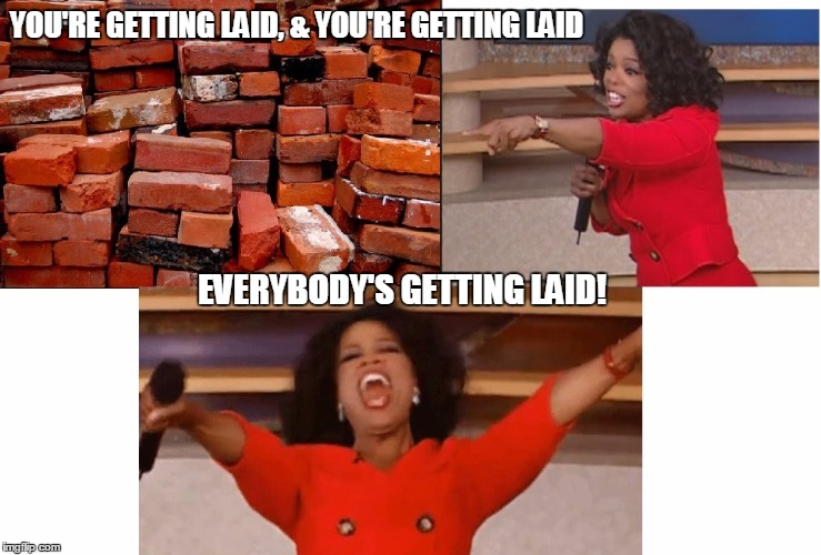 Everybodys getting laid | YOU'RE GETTING LAID, & YOU'RE GETTING LAID EVERYBODY'S GETTING LAID! | image tagged in bricks,oprah you get a,oprah winfrey,getting laid | made w/ Imgflip meme maker