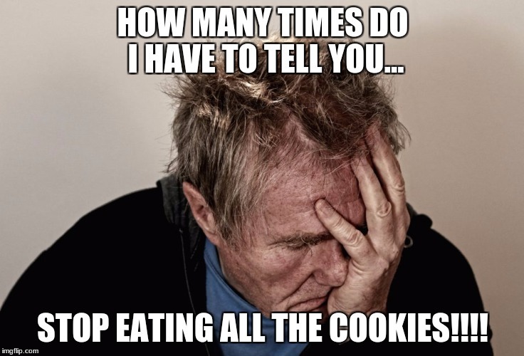 WANTS COOKIES | HOW MANY TIMES DO I HAVE TO TELL YOU... STOP EATING ALL THE COOKIES!!!! | image tagged in memes | made w/ Imgflip meme maker