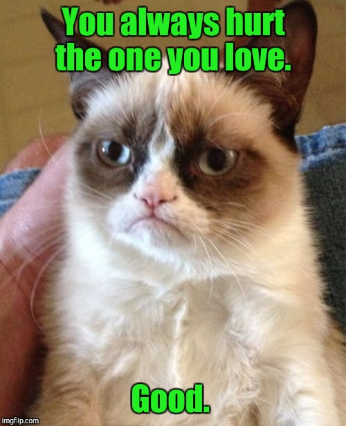 Grumpy Cat Meme | You always hurt the one you love. Good. | image tagged in memes,grumpy cat | made w/ Imgflip meme maker