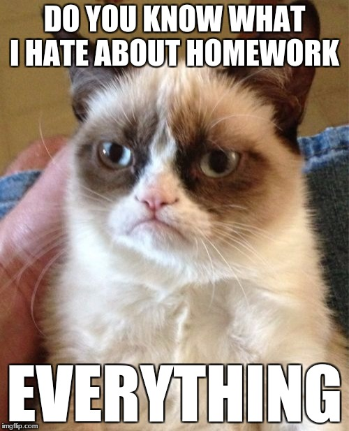 Grumpy Cat Meme | DO YOU KNOW WHAT I HATE ABOUT HOMEWORK EVERYTHING | image tagged in memes,grumpy cat | made w/ Imgflip meme maker