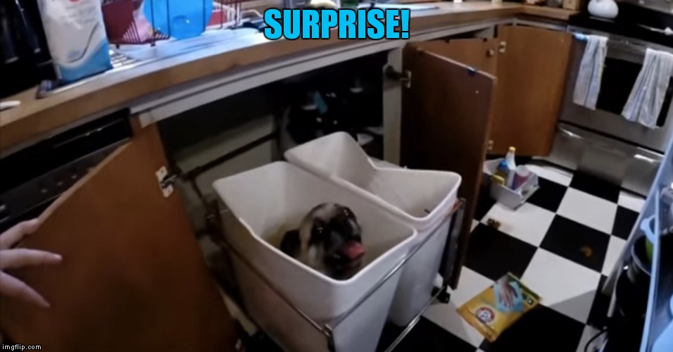 SURPRISE! | made w/ Imgflip meme maker