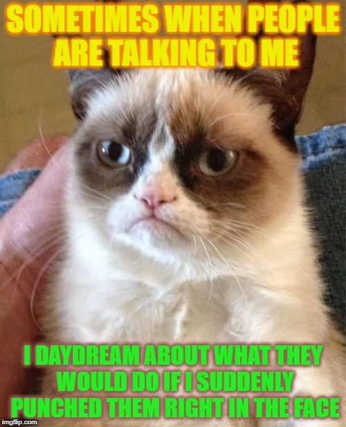Grumpy Cat Meme | SOMETIMES WHEN PEOPLE ARE TALKING TO ME I DAYDREAM ABOUT WHAT THEY WOULD DO IF I SUDDENLY PUNCHED THEM RIGHT IN THE FACE | image tagged in memes,grumpy cat | made w/ Imgflip meme maker
