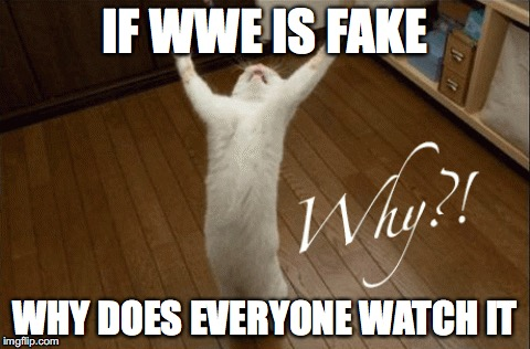 If WWE is fake, Why does everyone watch it? | IF WWE IS FAKE WHY DOES EVERYONE WATCH IT | image tagged in wwe is fake,why | made w/ Imgflip meme maker